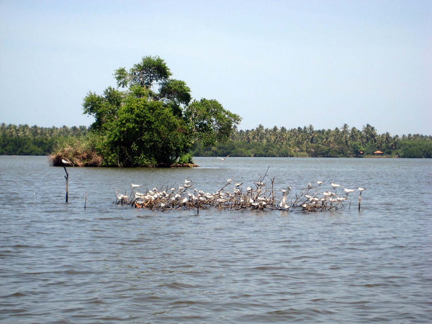 Eco-tours-Sri-Lanka